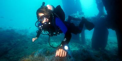 Streamlined diver